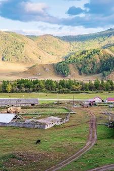 Veeboerderij in het dorp bovenaanzicht rusland berg altai dorp bichiktuboom