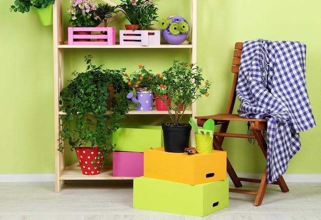 Veel mooie bloemen in potten in de kamer