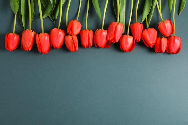 Veel mooie rode tulpen met groene bladeren op donker