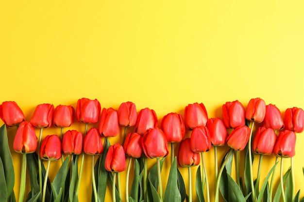 Veel mooie rode tulpen met groene bladeren op geel