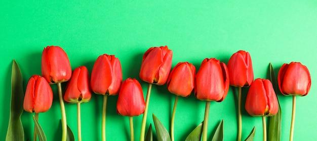 Veel mooie rode tulpen met groene bladeren op kleur