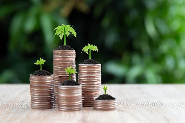 Veel munten zijn gestapeld in een grafiekvorm met jonge boom groeit.
