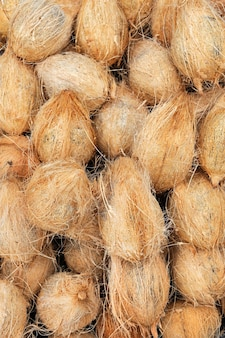 Veel oude bruine kokosnoten op een stapel