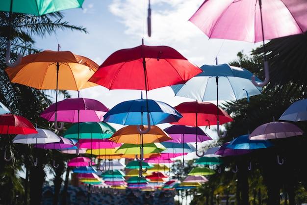 Veel paraplu's kleuren de lucht