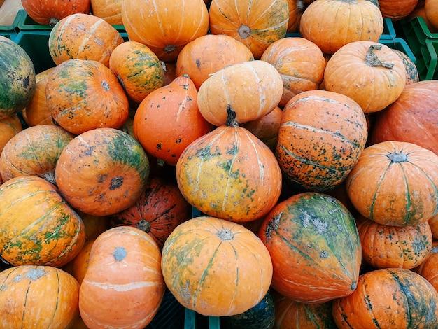 Veel pompoenen op een markt