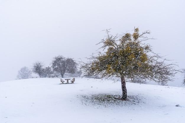 Veel sneeuw op de picknickplaats naast de berghut van de berg aizkorri in gipuzkoa. besneeuwde landschap door wintersneeuw