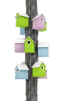 Veel van kleine kleurrijke houten nestkastjes over boompost op een witte achtergrond. 3d-rendering.