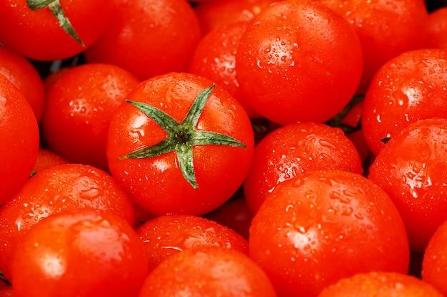 Veel verse rijpe tomaten met dauwdruppels.