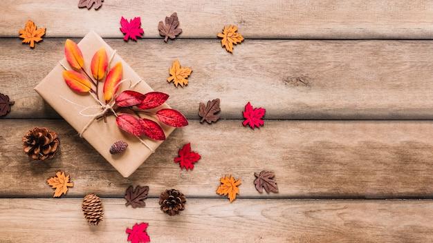 Veelkleurige bladeren rondom kartonnen doos