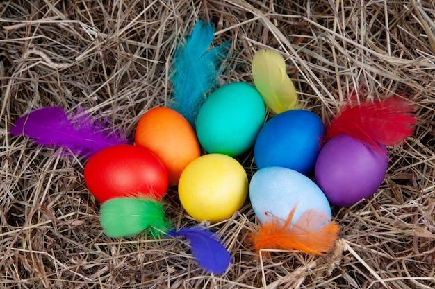 Veelkleurige eieren met kleurrijke veren in een nest met een notitie mock up, bovenaanzicht. concept pasen.