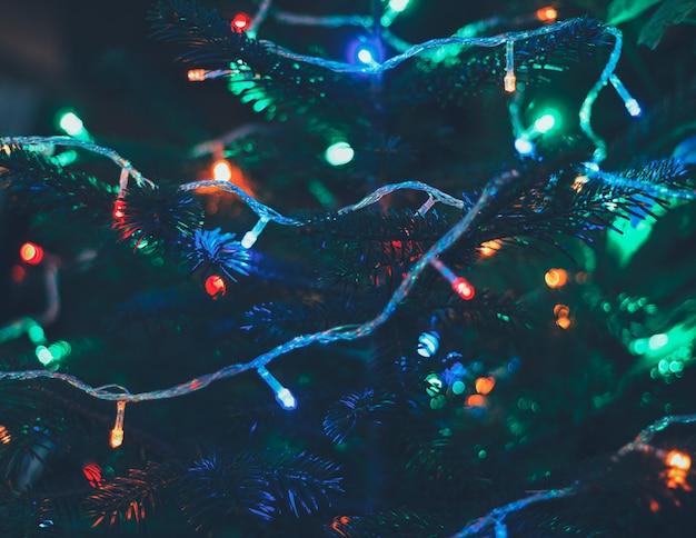 Veelkleurige kerstverlichting op nieuwe jaarboom