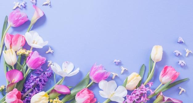 Veelkleurige lentebloemen op blauwe ondergrond