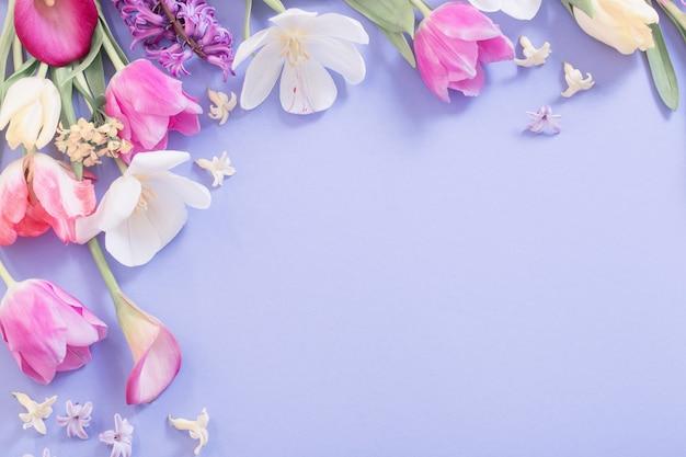 Veelkleurige lentebloemen op paarse ondergrond