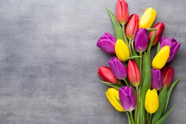 Veelkleurige lentebloemen, tulp op een grijze achtergrond.