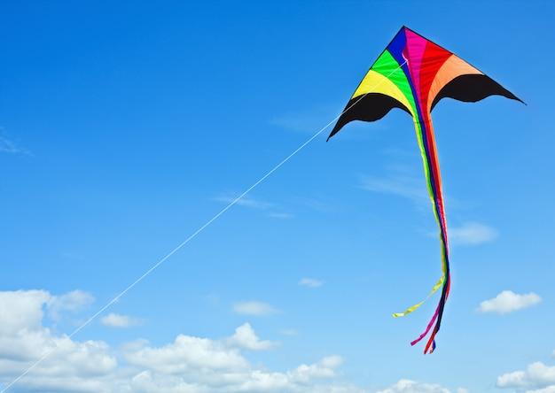 Veelkleurige vlieger