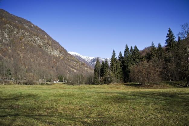 Veld bedekt met groen omgeven door heuvels onder het zonlicht en een blauwe lucht overdag