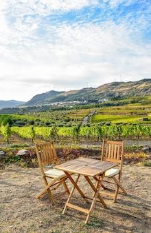 Veld beplant met wijnstokken op een zonnige dag bij dageraad met een houten tafel en twee stoelen