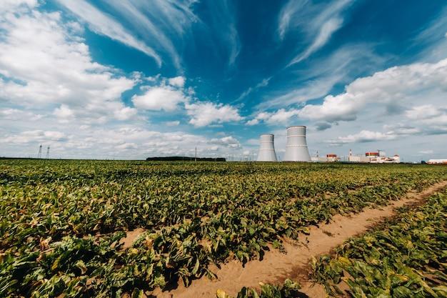 Veld bij de kerncentrale in het ostrovetsky-district