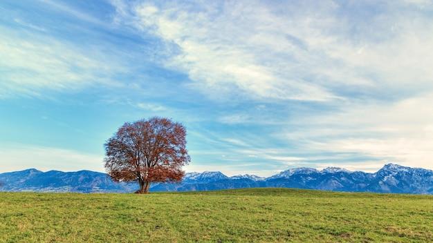 Veld en bergen