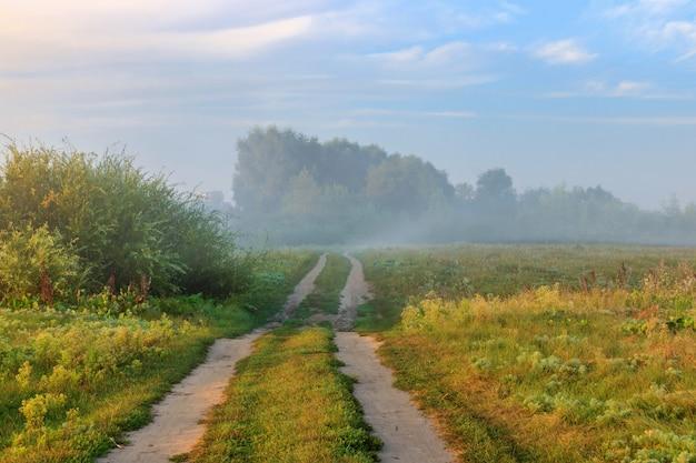 Veldweg langs rivieroever in mist op zonnige zomerochtend. rivierlandschap