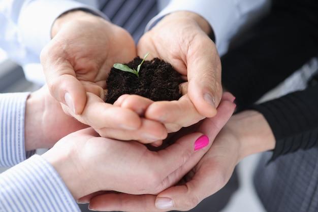 Vele handen met kleine groene spruit met aarde