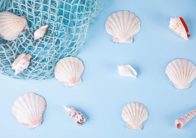Vele verschillende zeeschelpen en visnet als textuur en achtergrond voor ontwerpers