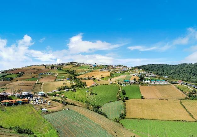 Velen toevlucht op bergen en landbouw blauwe hemel