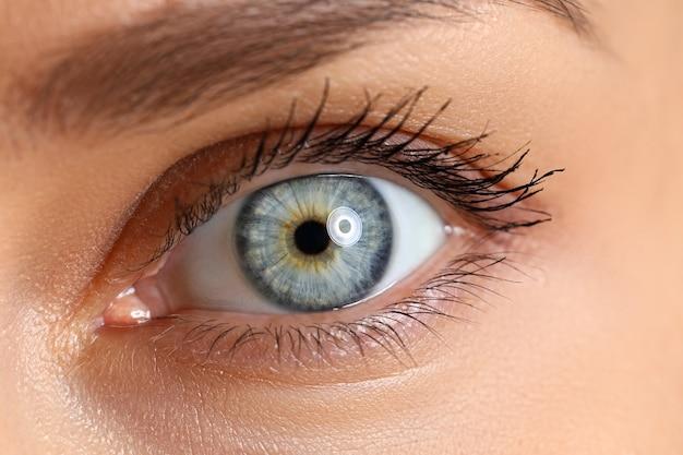 Verbazend vrouwelijk blauw en groen gekleurd wijd geopend oogclose-up
