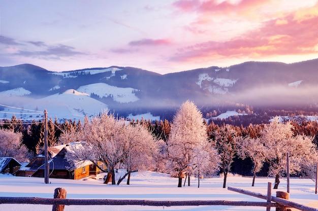 Verbazingwekkende bergen in de ochtendzon. karpaten, oekraïne, europa.