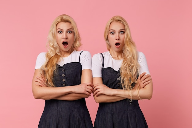 Verbijsterde jonge vrij langharige blonde vrouwen gekleed in elegante kleding houden handen gevouwen terwijl ze verbaasd naar de camera kijken met grote ogen geopend, poseren op roze achtergrond