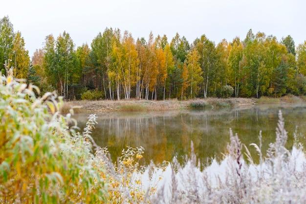 Verbluffend mooi herfstbos en reflectie in de rivier. herfst concept gele bladeren en heldere blauwe hemel.