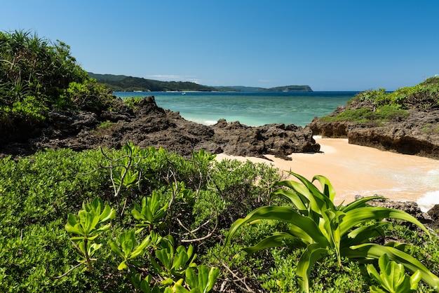 Verborgen strand met smaragdgroene zee, rotsformatie vol kustplanten. iriomote eiland.