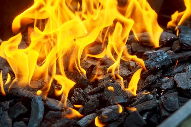 Verbrandend in de rode houtoven met vuurvlam.