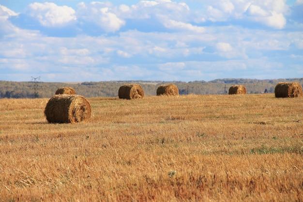 Verdraaide hooiberg op het landschap van het landbouwgebied.