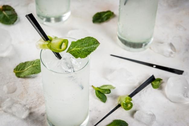 Verfrissende komkommer-jenever en tonische alcoholische cocktail met citroen en munt, op een oude houten rustieke tafel