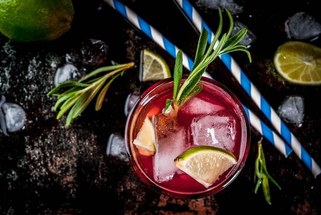 Verfrissing alcoholische rode cranberry en limoencocktail met rozemarijn en ijs, twee glazen bovenaanzicht