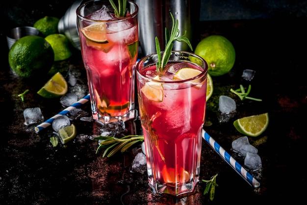 Verfrissing alcoholische rode cranberry en limoencocktail met rozemarijn en ijs, twee glazen, donker