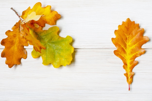 Vergeelde eiken bladeren op een licht witte houten tafel.
