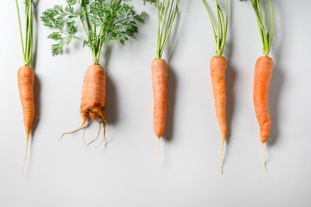 Vergelijking van verse wortelen van eigen bodem, normale en ongewone lelijke vorm