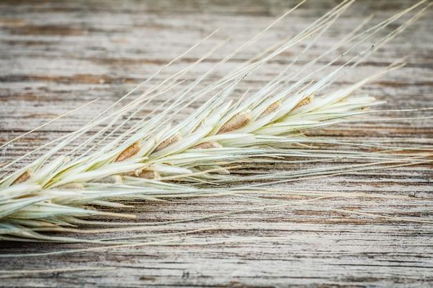 Vergrote weergave van spikelet van tarwe op oude houten achtergrond. ondiepe scherptediepte.