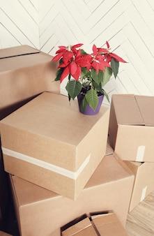 Verhuizen naar huis met kartonnen dozen