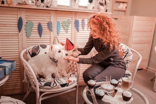 Verjaardag hoed zetten. roodharige, gekrulde vrouw die breed glimlacht terwijl ze een verjaardagshoed op haar honden zet