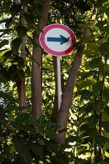 Verkeerspijl ondertekenen in het bos