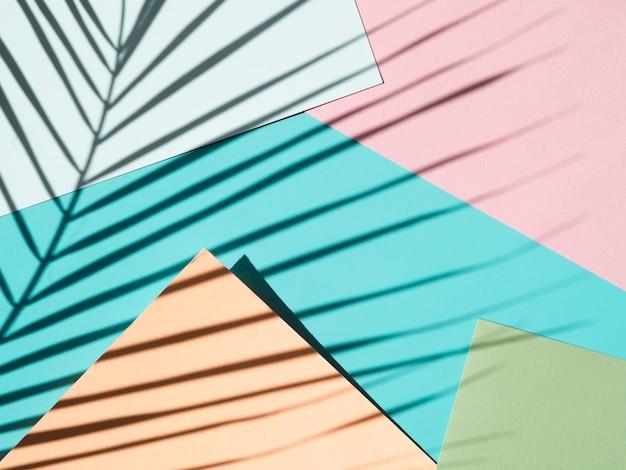 Verlaat schaduw op een blauwe en roze achtergrond met lichtblauw