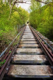 Verlaten spoorwegbrug die door weelderige vegetatie wordt omringd.
