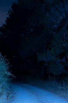Verlichte weg in de nacht