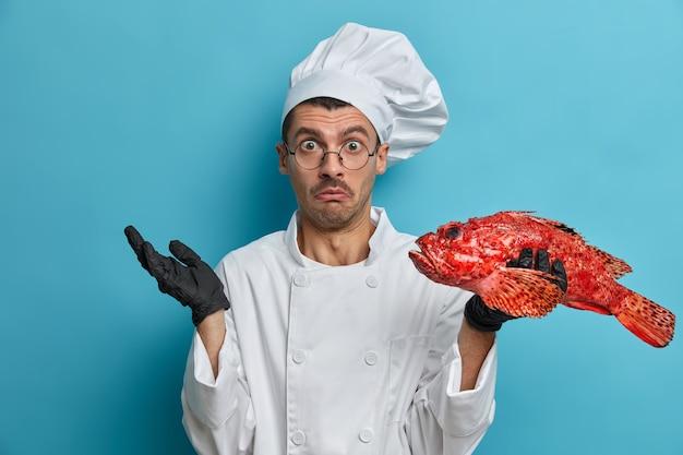 Verontwaardigde aarzelende chef-kok houdt rode zeebaars vast, kan niet beslissen wat hij moet koken, draagt uniforme, zwarte handschoenen