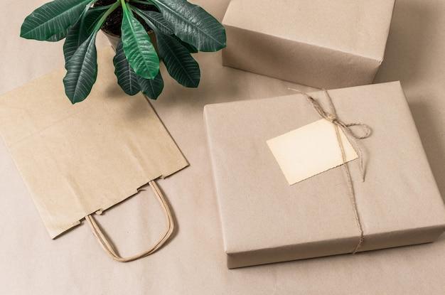 Verpakte dozen en boodschappentas op grijze achtergrond met groene plant