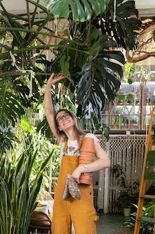 Verplanten kamerplanten vrouwelijke bloemist met bloempot drainage rotsen transplantatie huis tuinplant