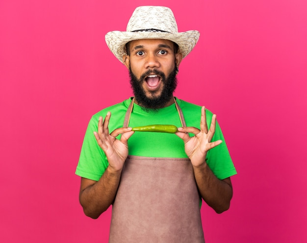 Verrast jonge tuinman afro-amerikaanse man met tuinhoed met peper geïsoleerd op roze muur